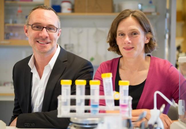 스웨덴 카롤린스카연구소의 조지 루아스 연구원(왼쪽)과 마리아 린드스코그 연구원(오른쪽). - Ulf Sirborn 제공